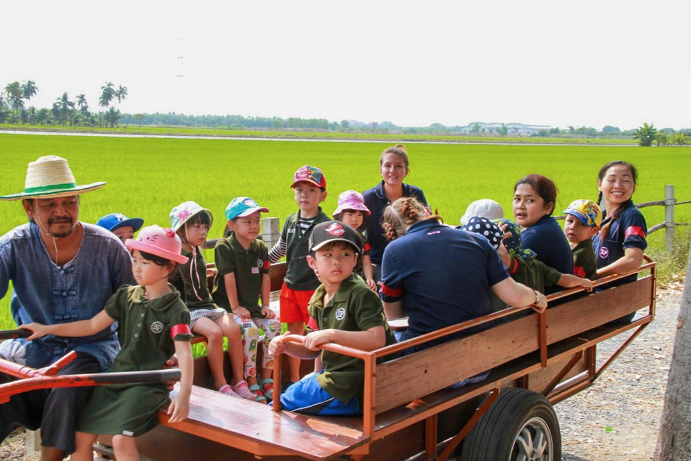 Rice Farm Field Trip