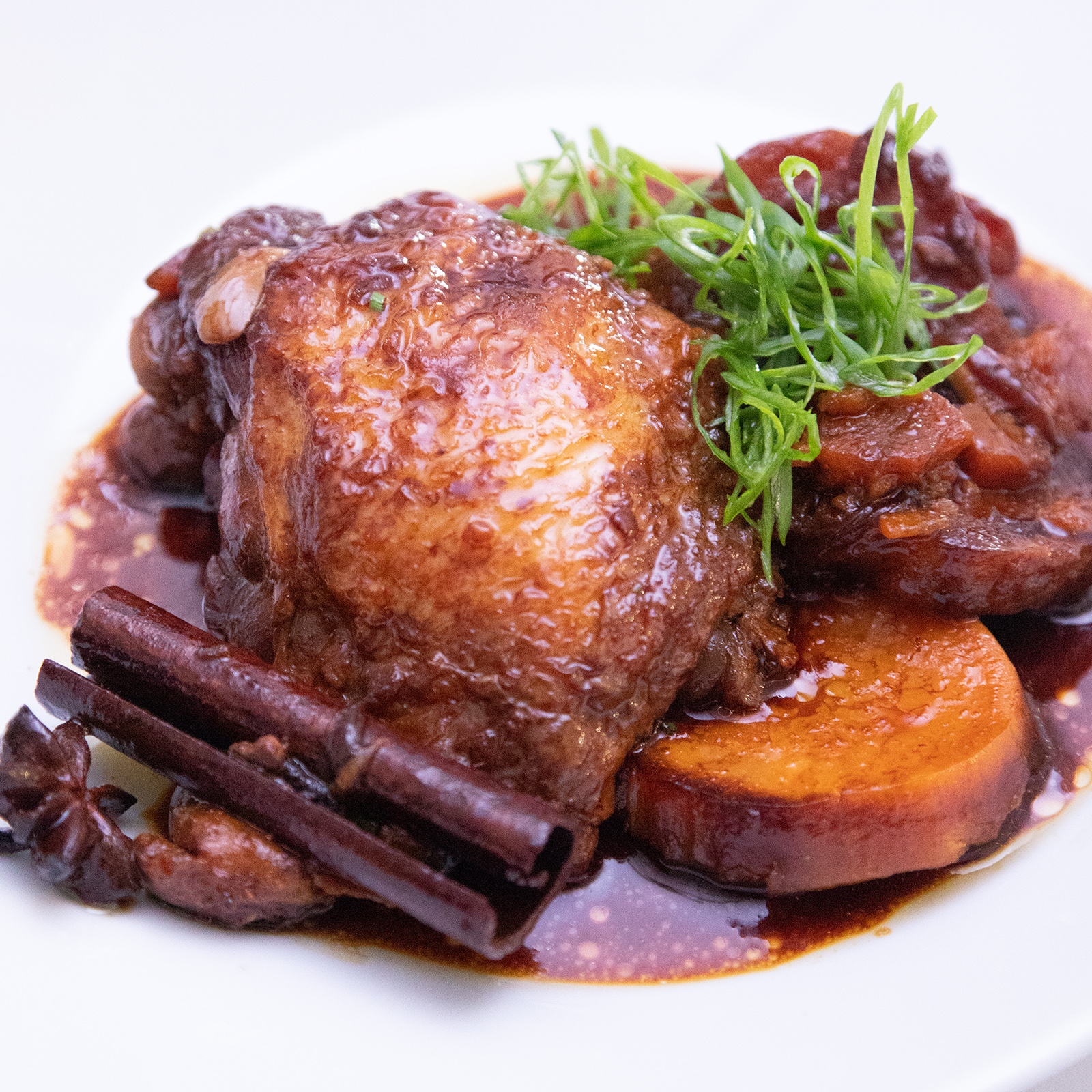 Pressure Cooker Soy and Garlic Braised Chicken