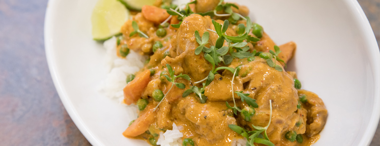 Easy Chicken Curry Medallions