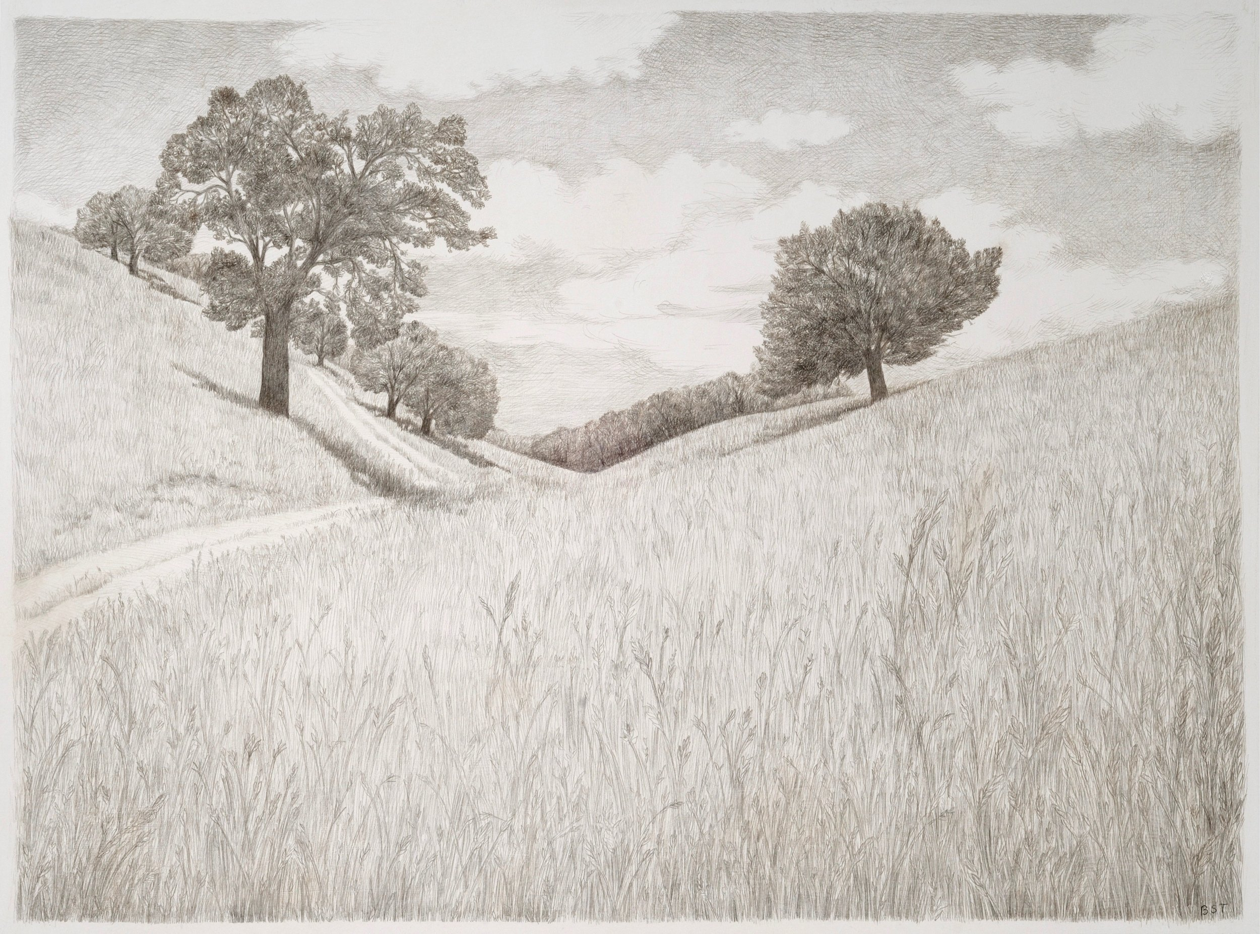 Santa Ana, 2014, silverpoint on paper, 30 x 22 in, $2,000