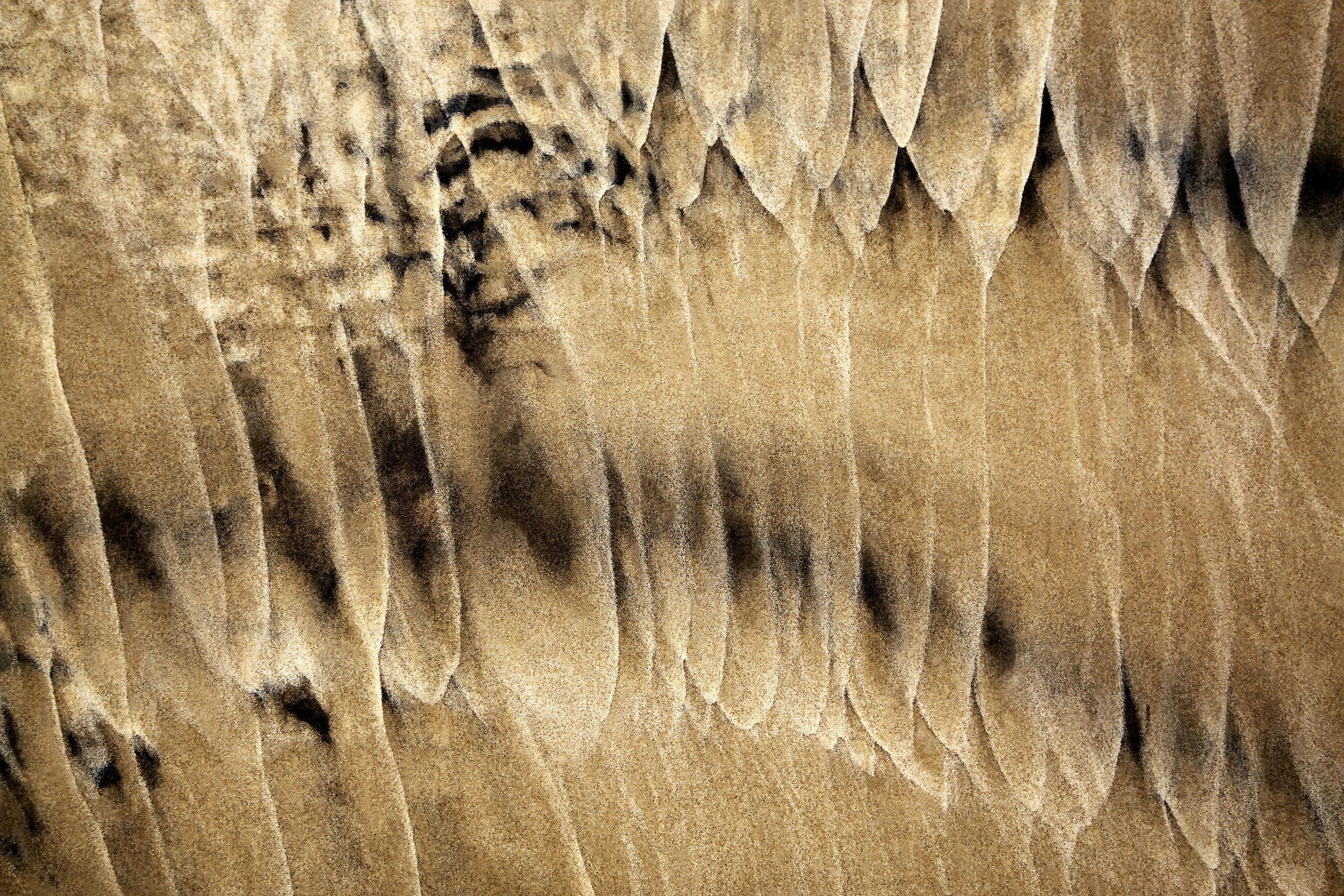 Terra Tracing 14, 2015, Hahnemuele photo rag, 20 x 30 in, edition of 15 (13 available), $1,700; 26 x 39 in, edition of 15 (14 available), $2,800