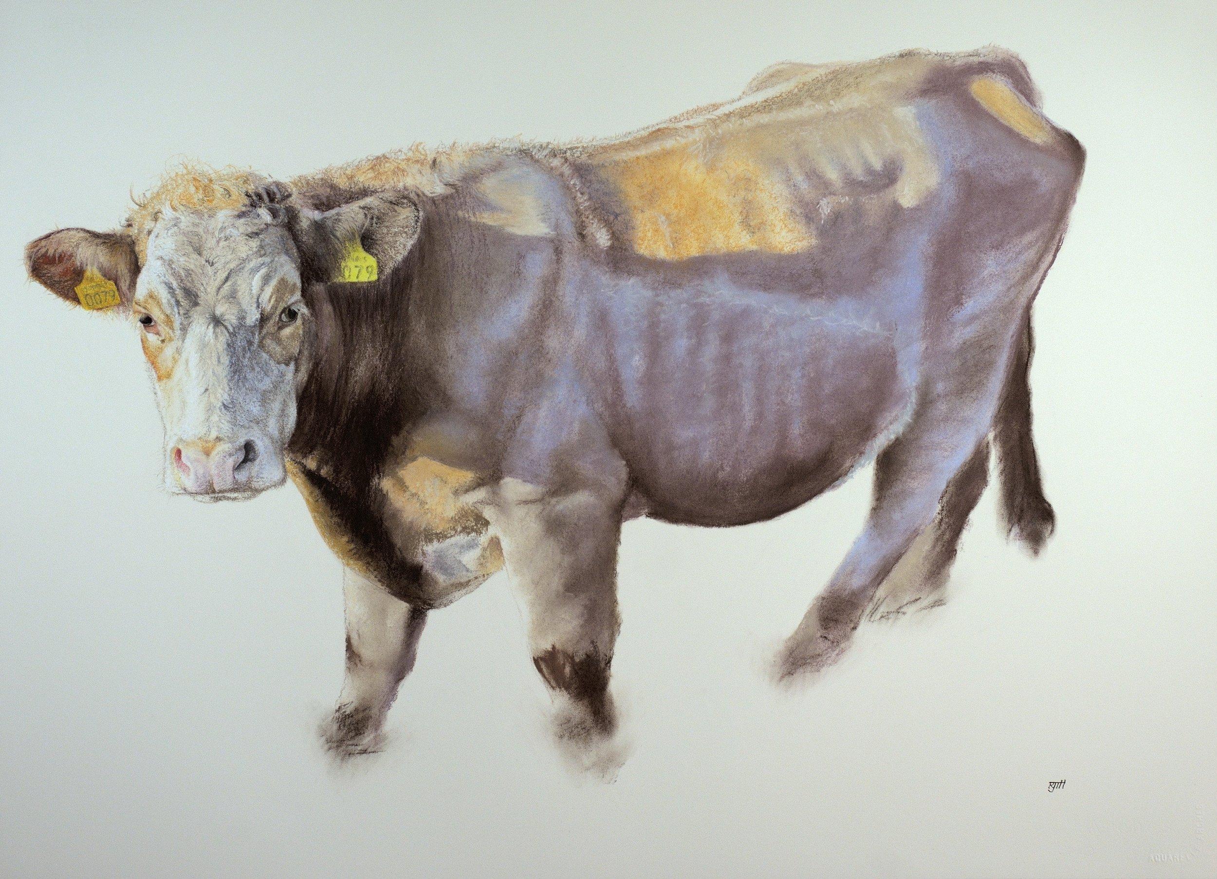La Vache Qui Ne Rit Pas, 2018, pastel, 23 x 33 in, $4,000