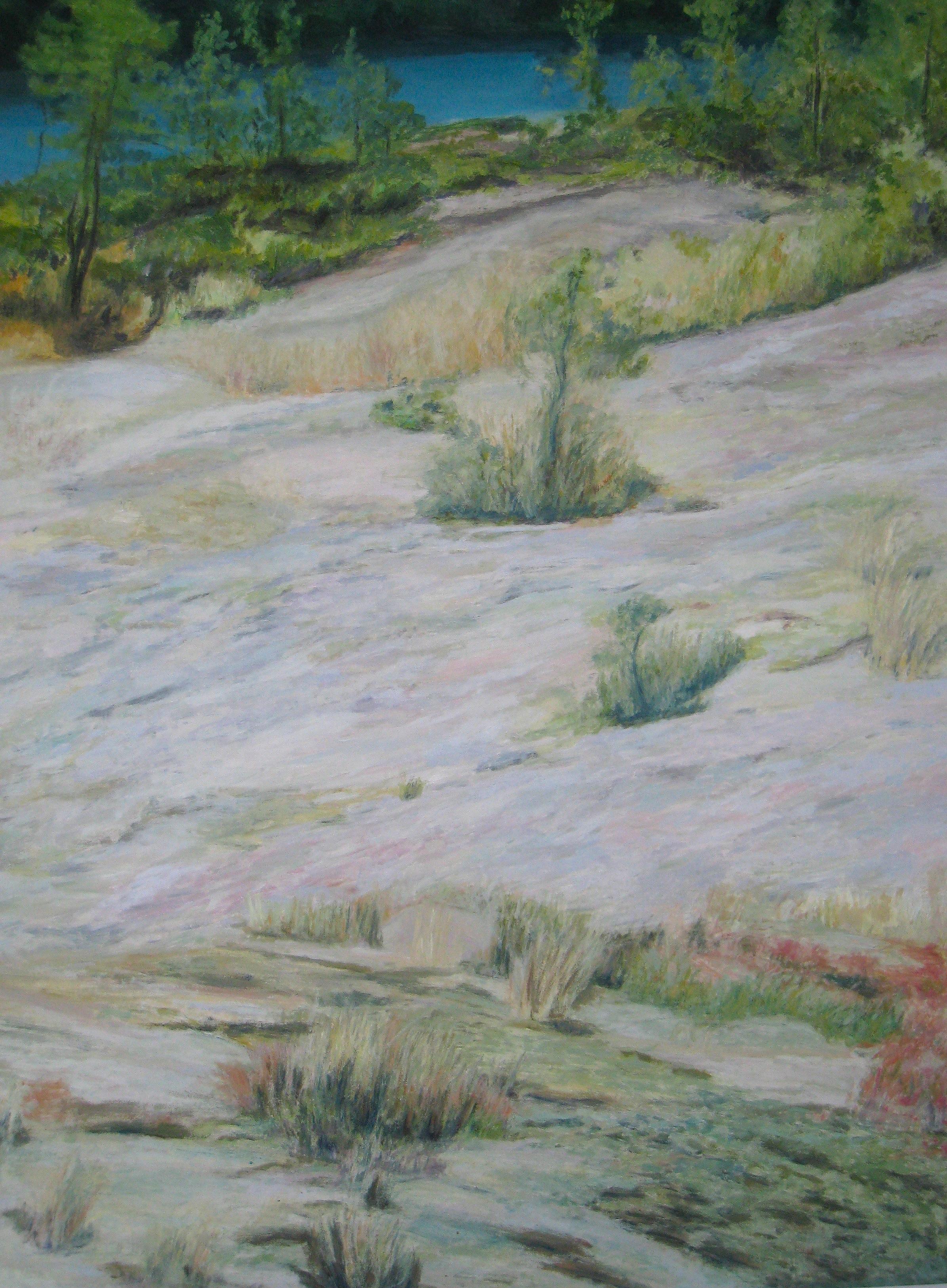 Swedish Hillside, 2007, oil, canvas, 70 x 50 in, SOLD