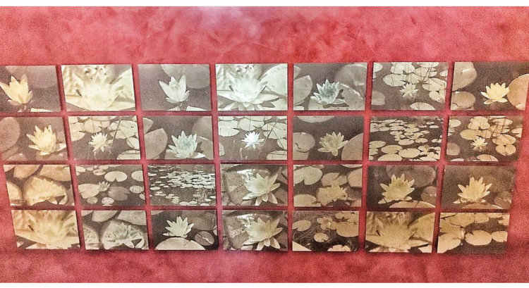 O'Donnell installation of 28 Waterlilies, sepia tone photographs on gold-toned metal, approximately 30 x 88 in (can be vertical or horizontal), $21,000
