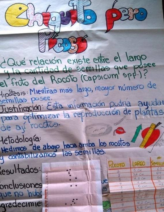 Figura 7 . Los estudiantes elaboran un poster para presentar los resultados de sus hallazgos. Foto: archivo EPI