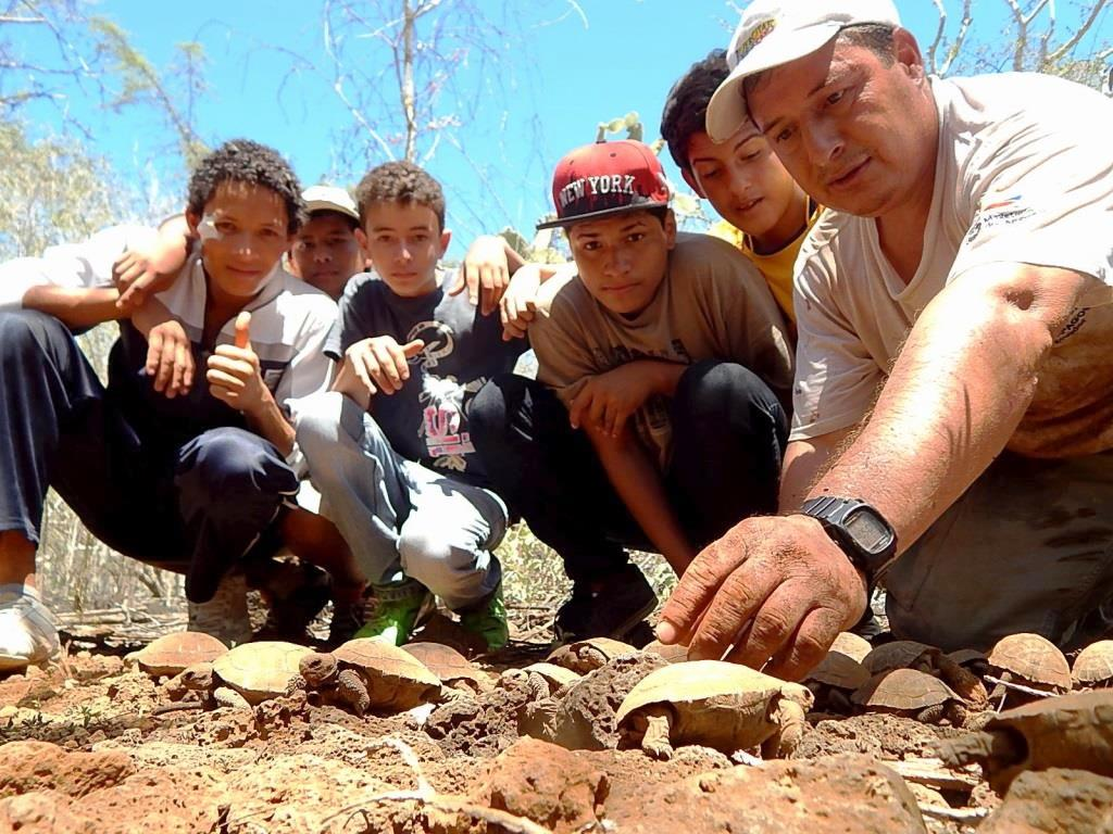 Figure 1 . During field trips with park rangers, students help newly hatched tortoises leave their nests. Photo: EPI Archive