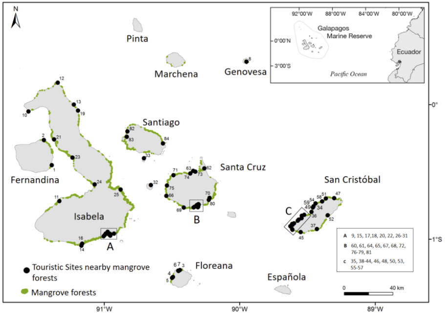 Figure 6 . Mangrove-based tourism sites in Galapagos, represented by black dots.  Click to enlarge.