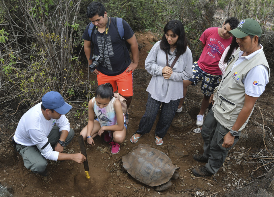 Figure 7 . Field expedition to monitor giant tortoise nests. Photo: Diego Bermeo