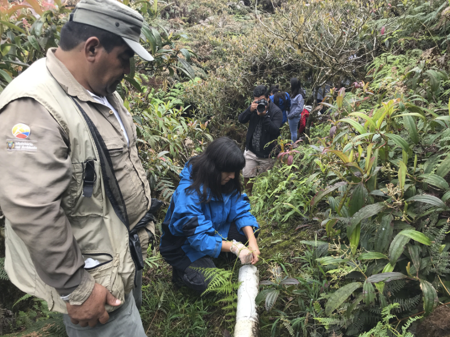 Figure 9.  Field expedition to learn about control of introduced species at Media Luna. Photo: Diego Bermeo