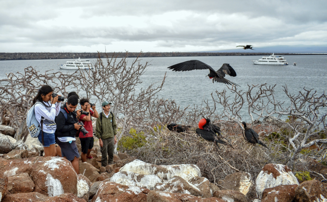 Figure 16 . Field trip to North Seymour Island. Photo: Andrés Morales