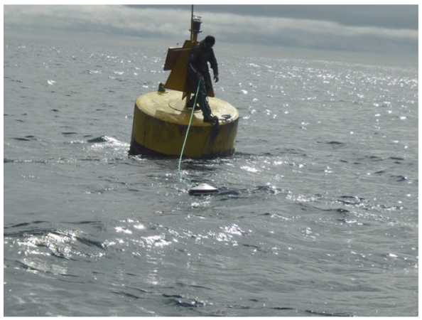Figure 7.  FAD with satellite buoy installed. The satellite buoy records the biomass of fish in the vicinity of the FAD. Photo: José Marín Jarrín, Fundación Charles Darwin
