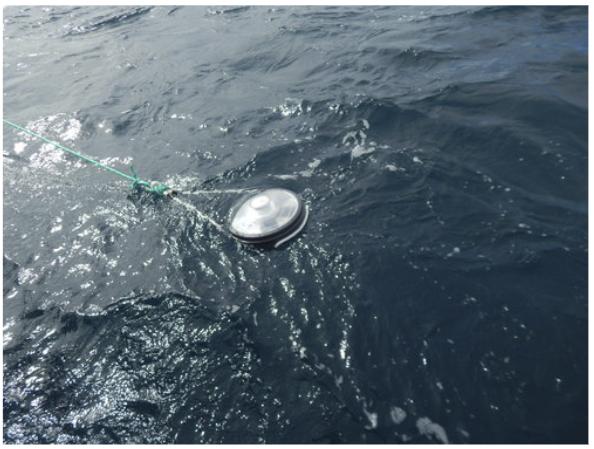 Figure 8.  Satellite buoy. Photo: José Marín Jarrín, Fundación Charles Darwin