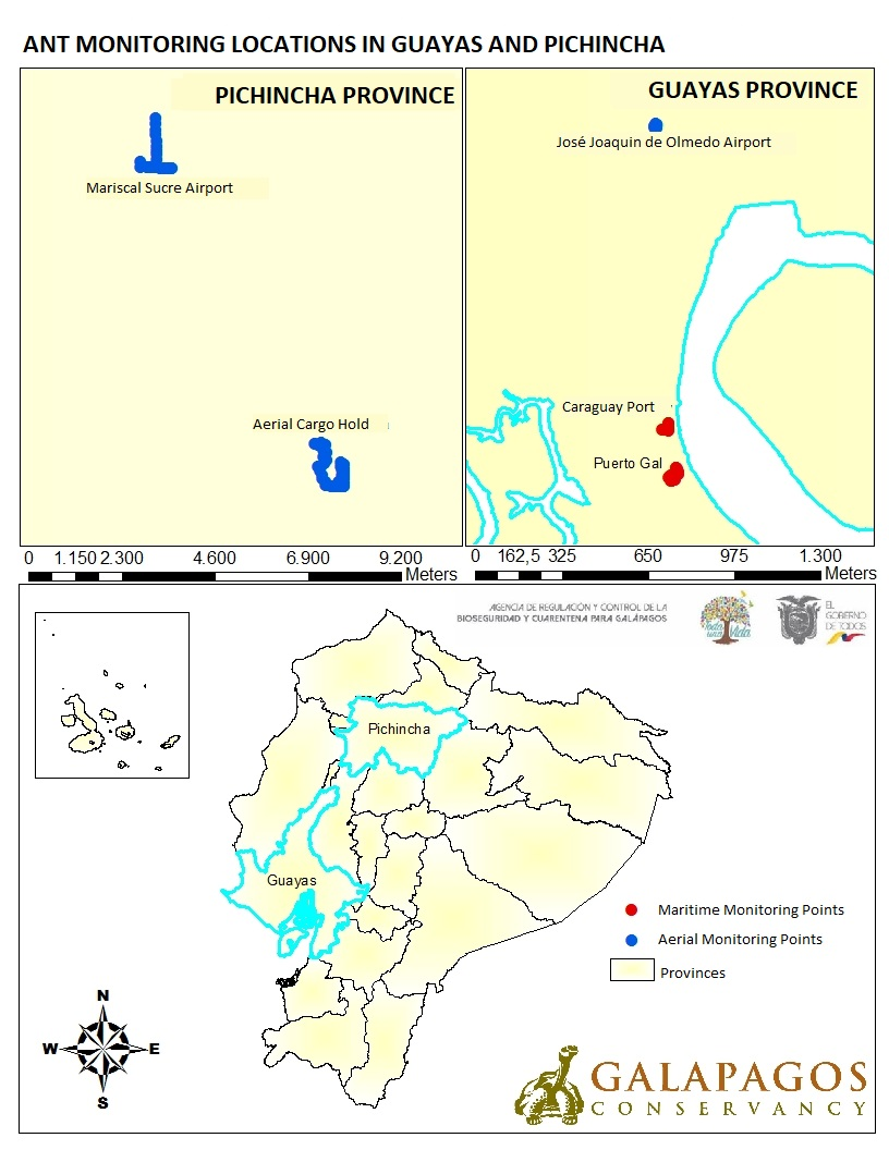 Figure 2a.  Ant monitoring sites in mainland Ecuador and in the populated islands of Galapagos.  Click to enlarge.