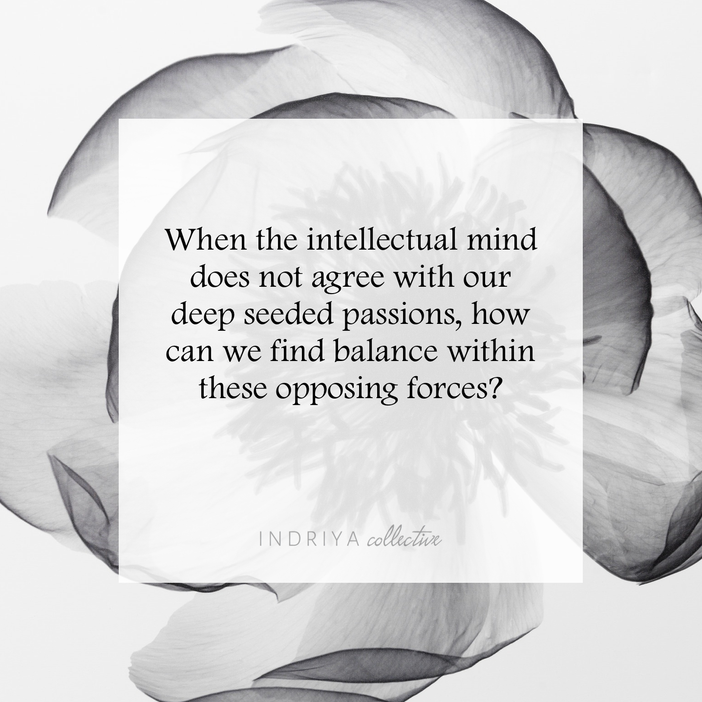 Intellectual Mind vs Passion