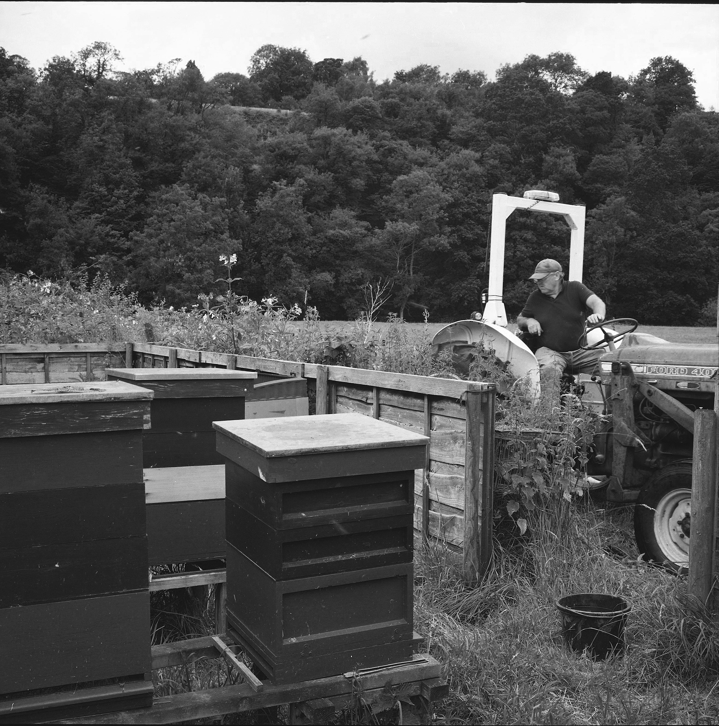 Hives and Tractor 17.07.19 c Kat Wood  copy.jpg