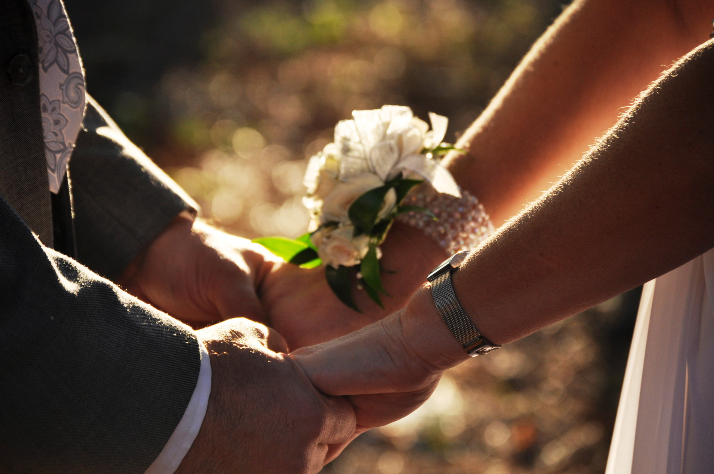 1_111001_Crystal and Paul's Wedding 244.jpg