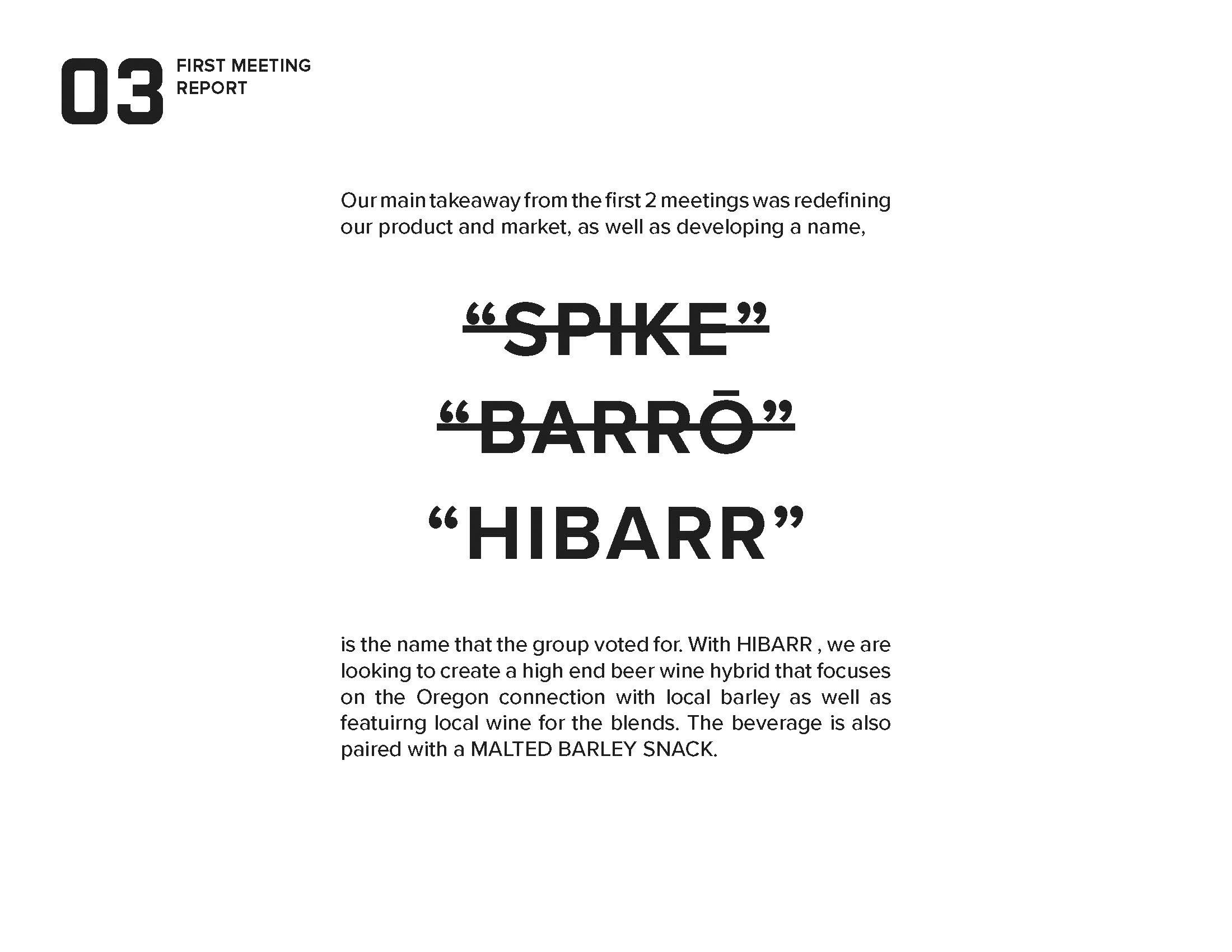 hibarr_presentation_Page_04.jpg