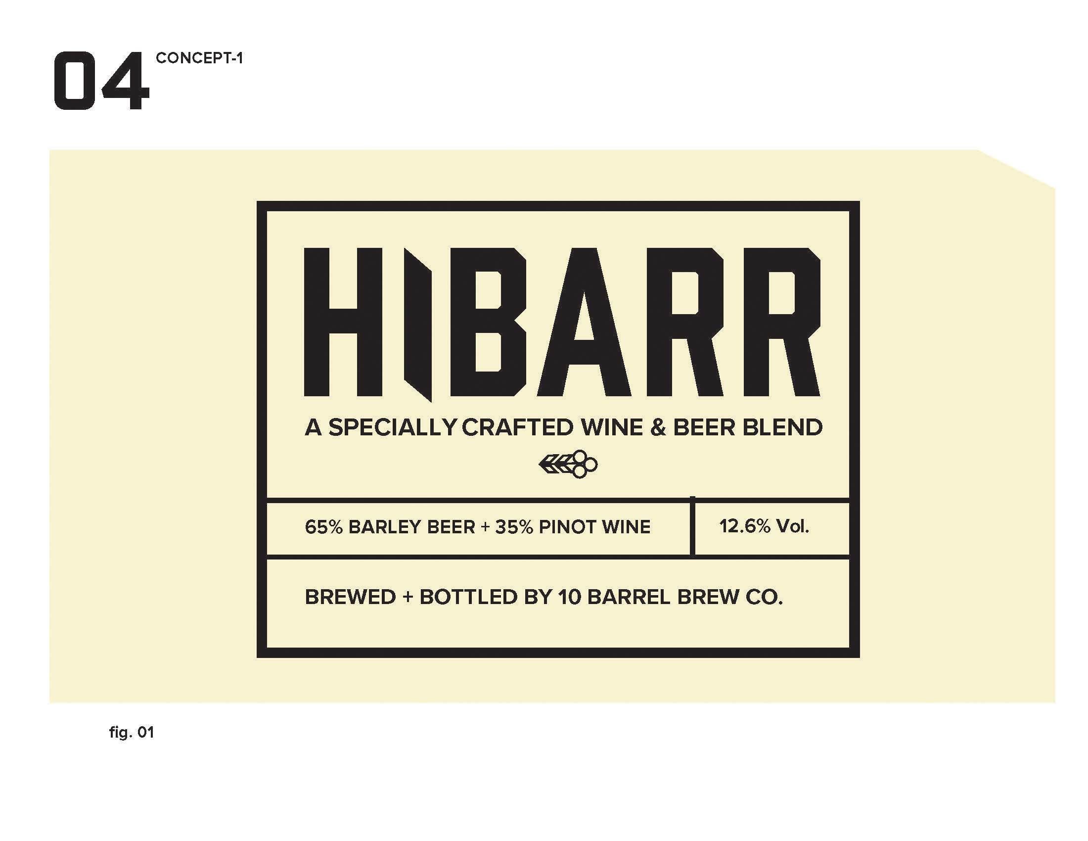 hibarr_presentation_Page_06.jpg