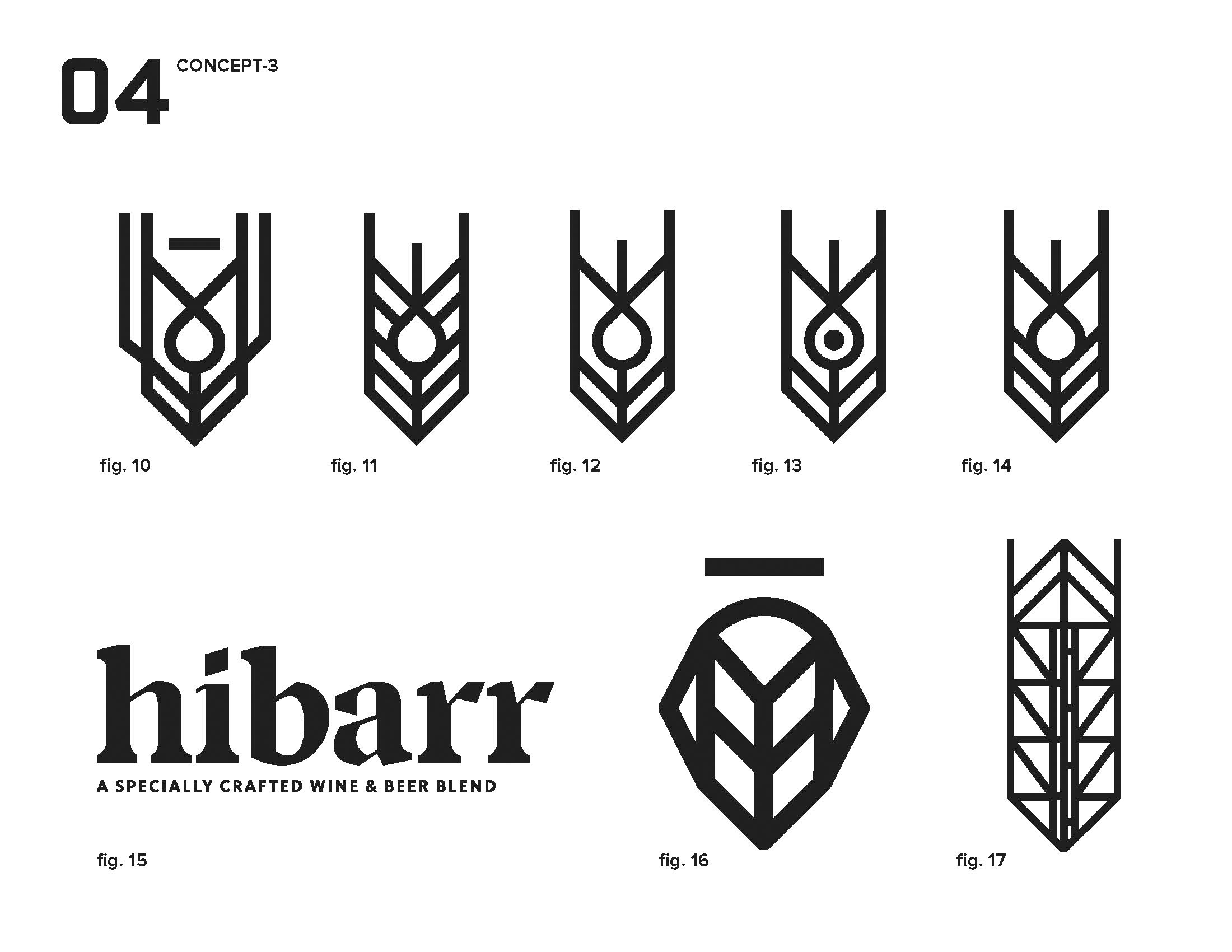 hibarr_presentation_Page_11.jpg