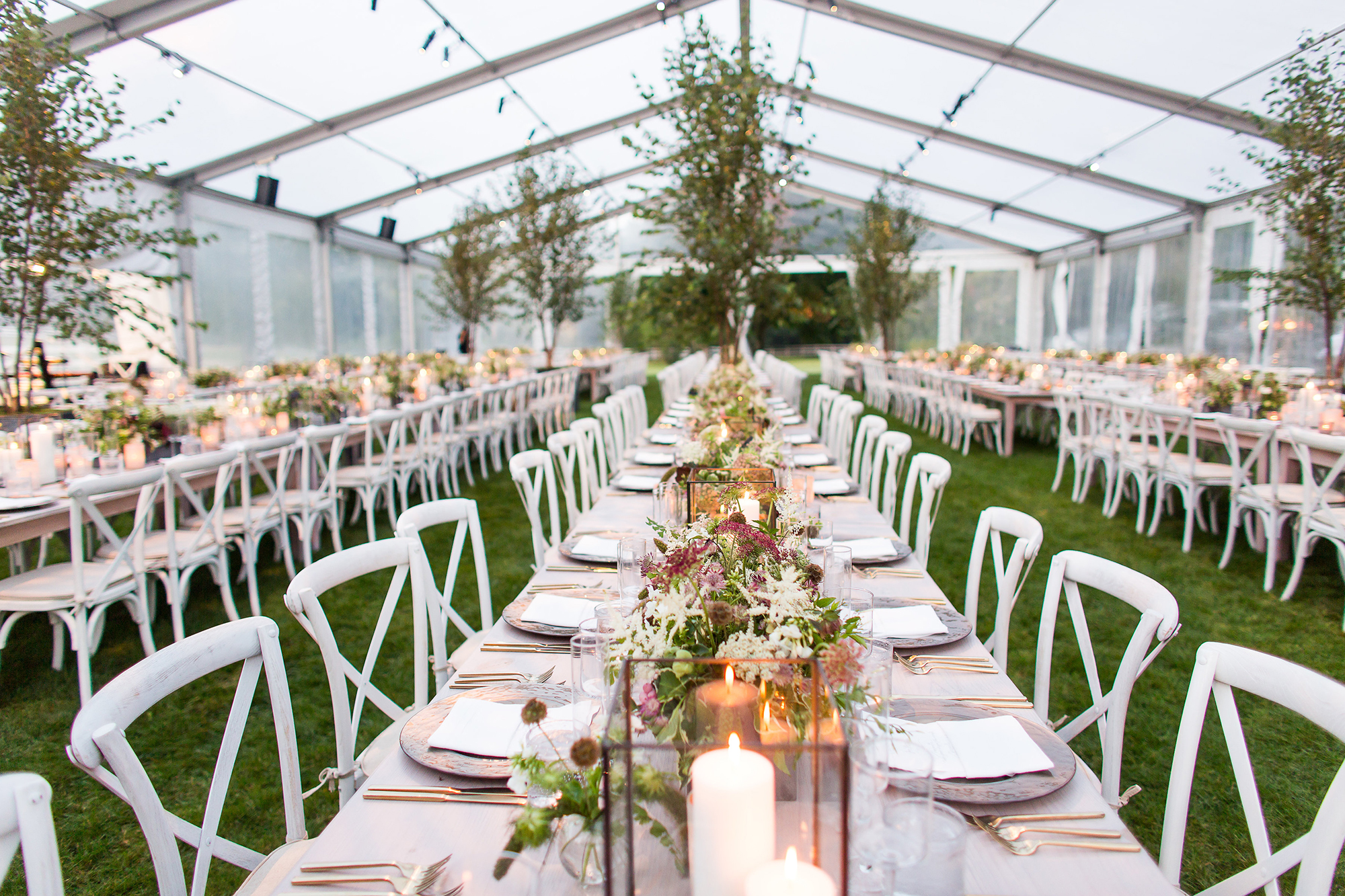 000_Garden Wedding Clear Top Tent_AE Events.jpg