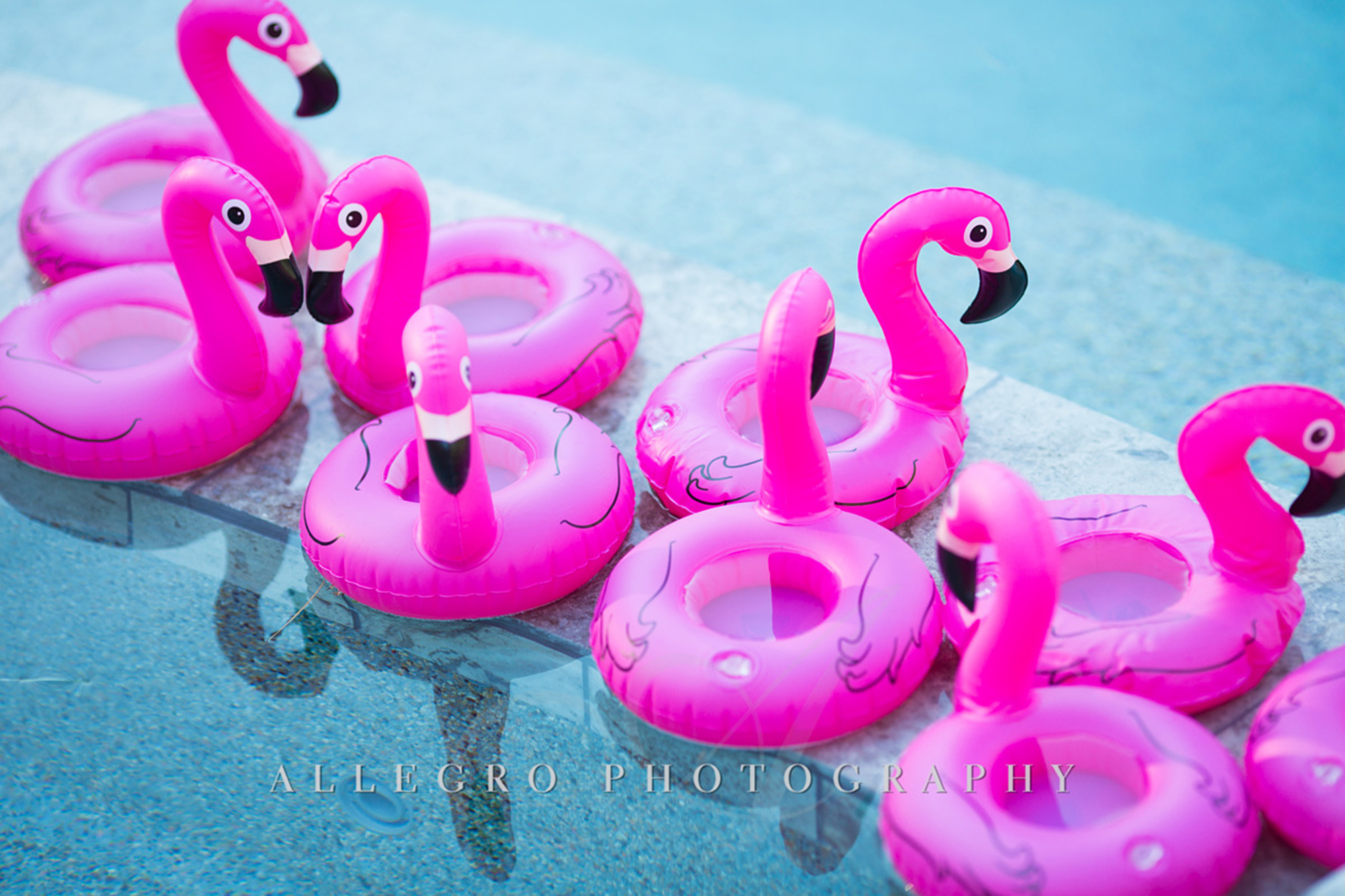 05_Private Engagement Party Pool Flamingos_AE Events.jpg