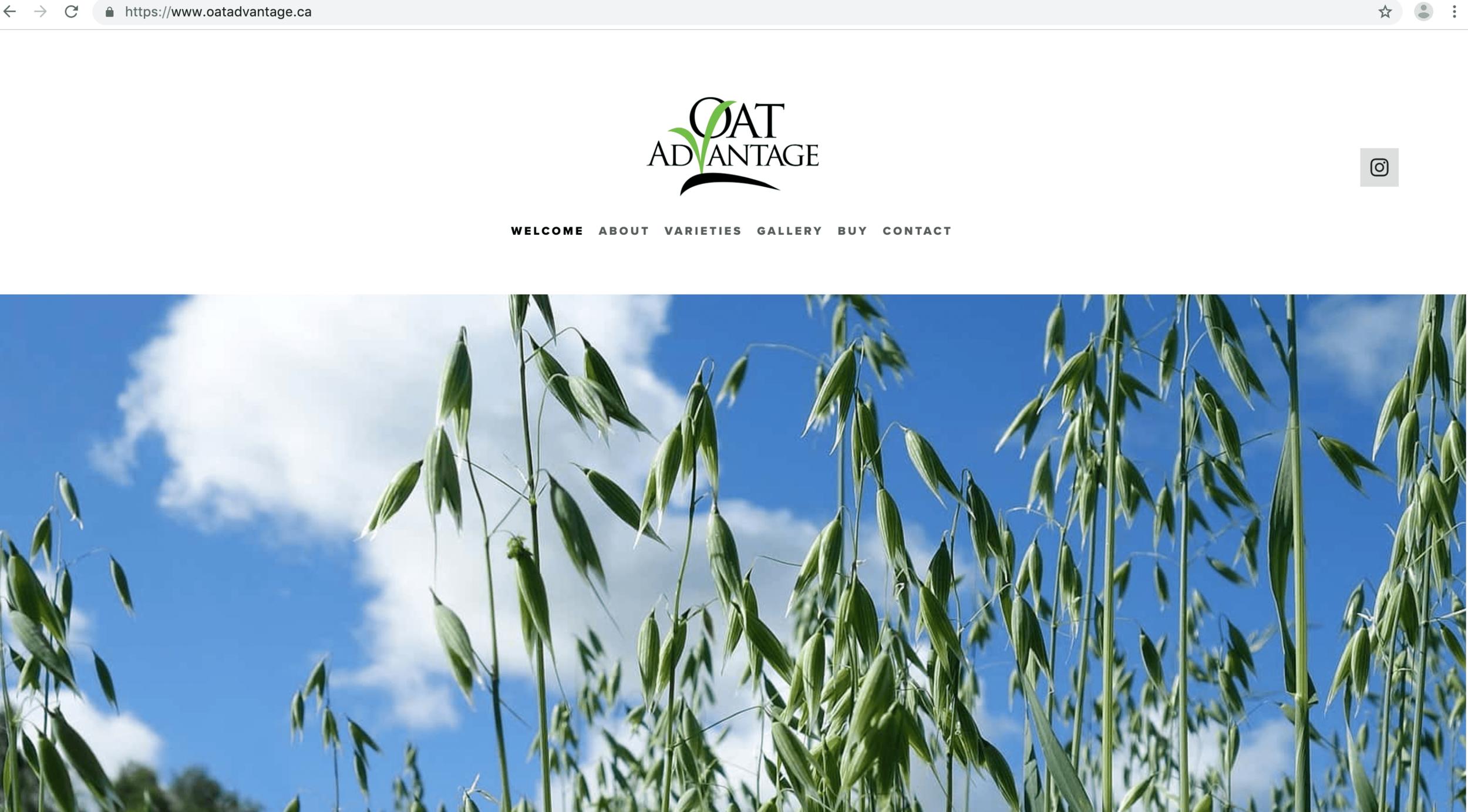 www.oatadvantage.ca-min.png