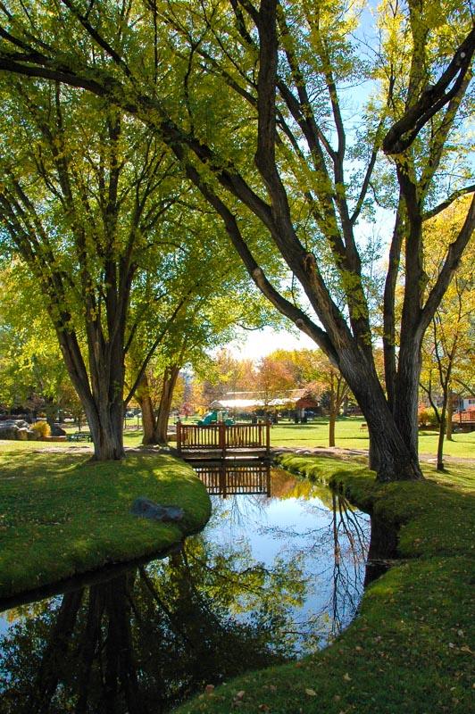 Carbondale Park Ditch.JPG