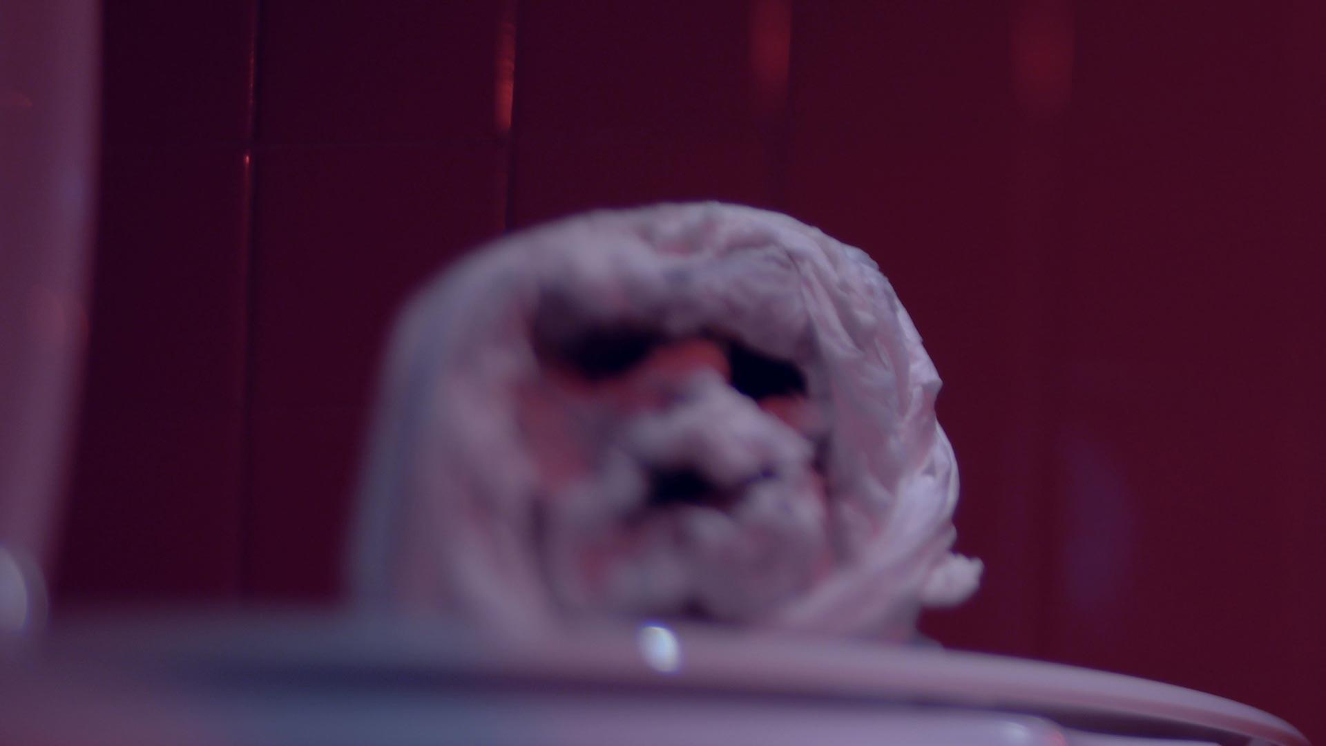 NRH - Toilet Monster (Hi-Res).jpg