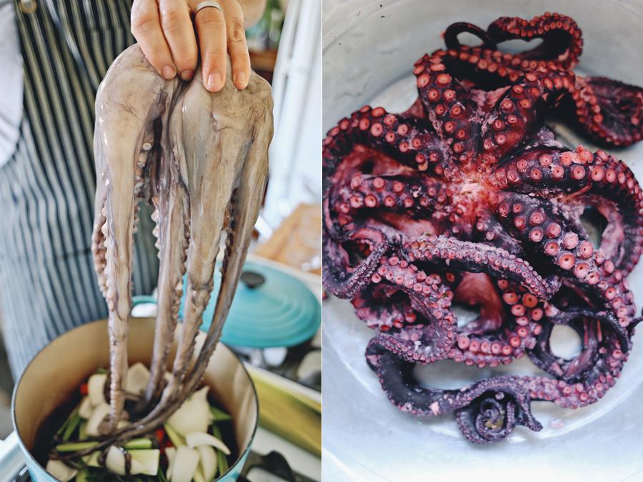 Octopus Prep | Dine X Design
