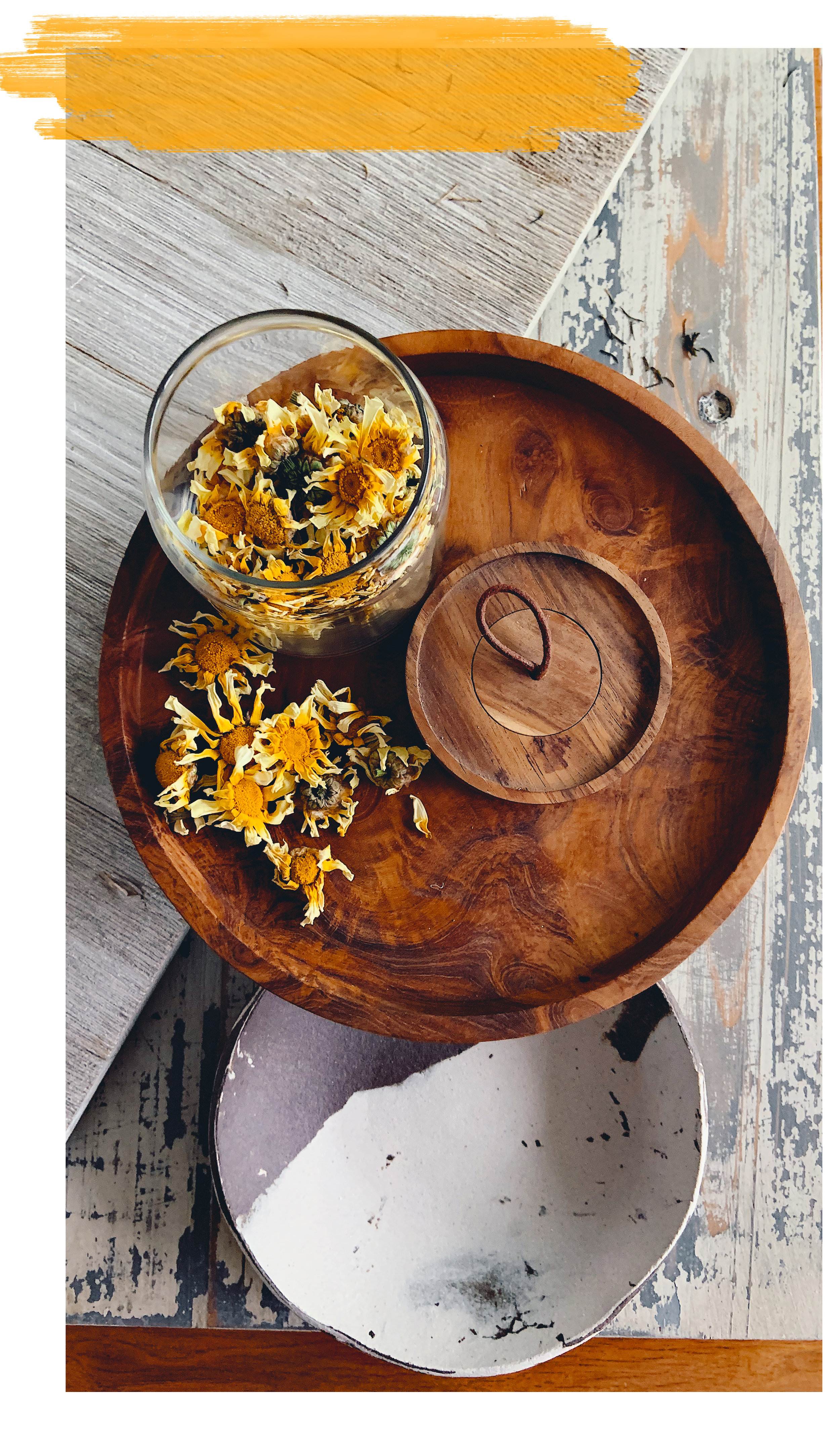 edible chrysanthemum dried flowers.jpg