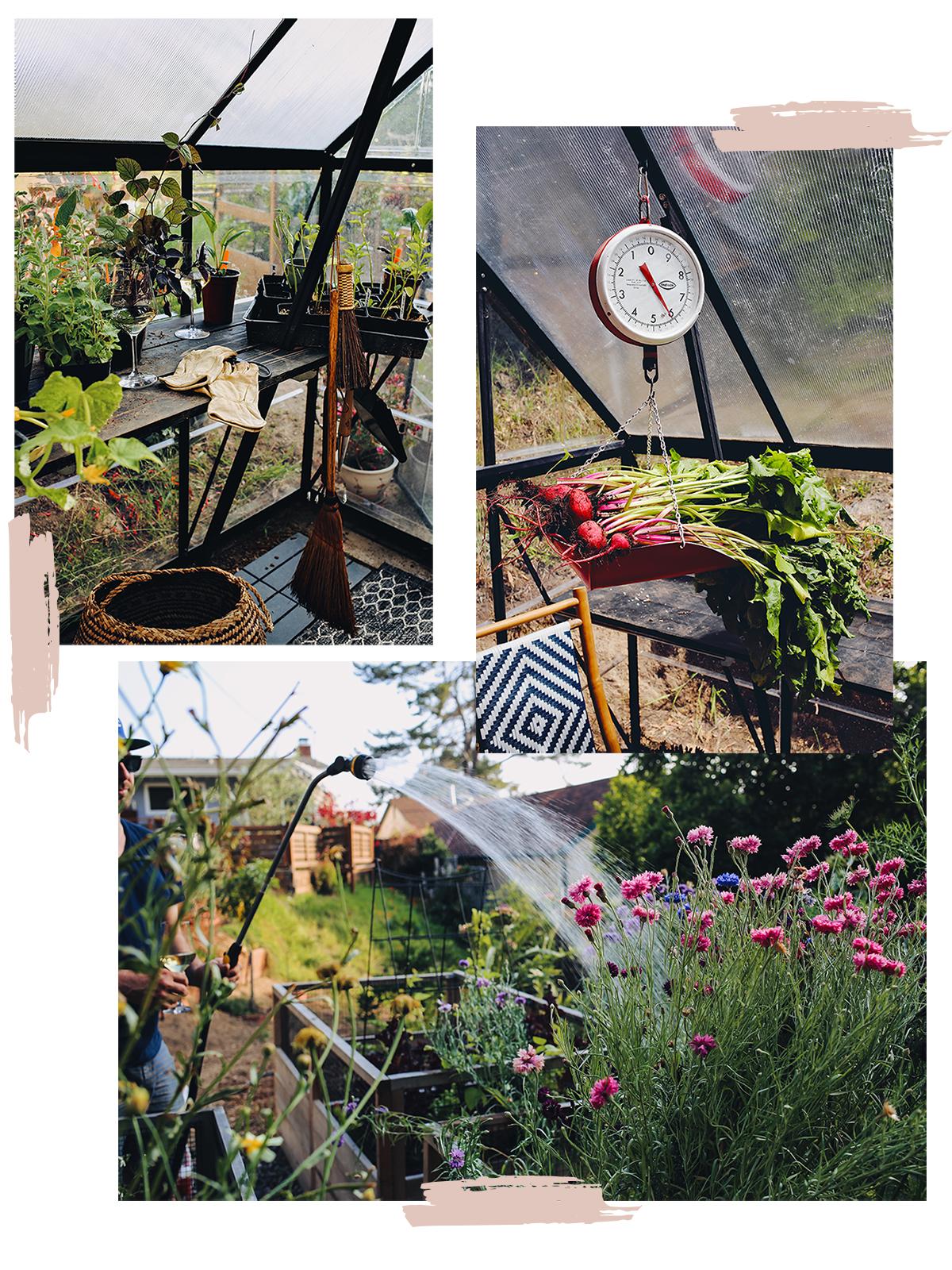 07_Plant Care Watering & Wine | Dine X Design copy.jpg