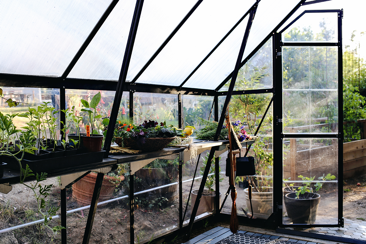 02_Greenhouse Interior| Kristin Guy Dine X Design.jpg