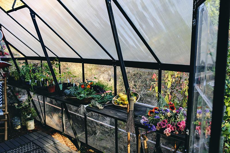 14_Greenhouse Interior  | Kristin Guy Dine X Design.jpg