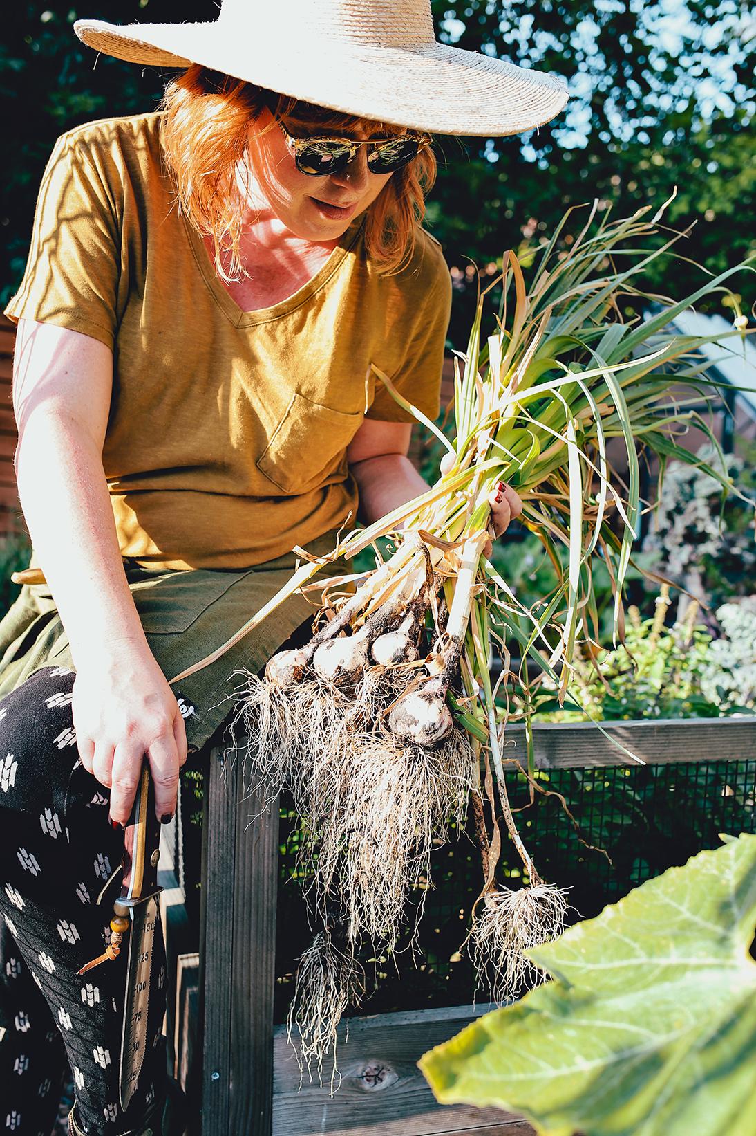 06_Dine X Design | Growing Garlic.jpg