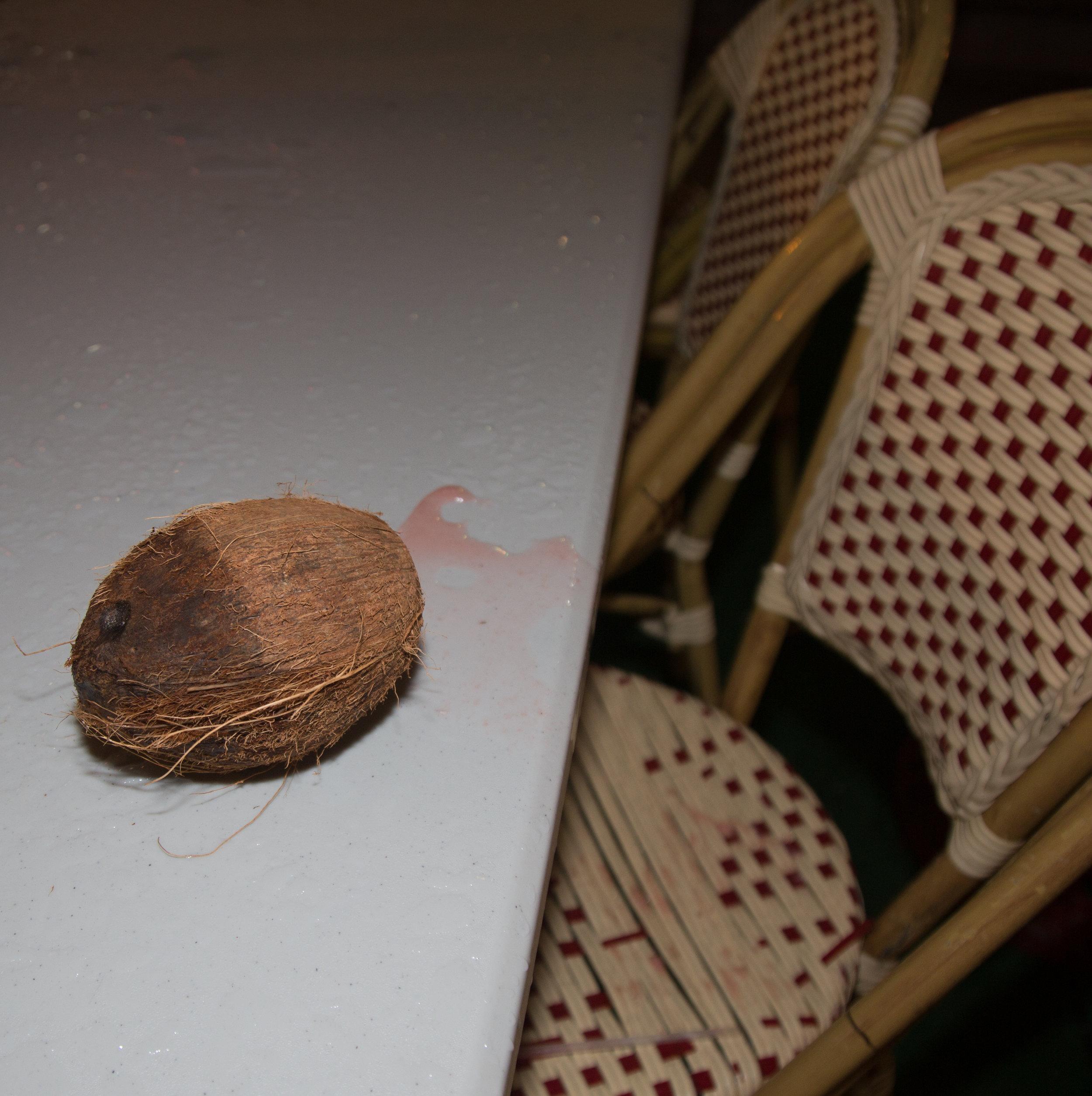 Bleeding Coconut