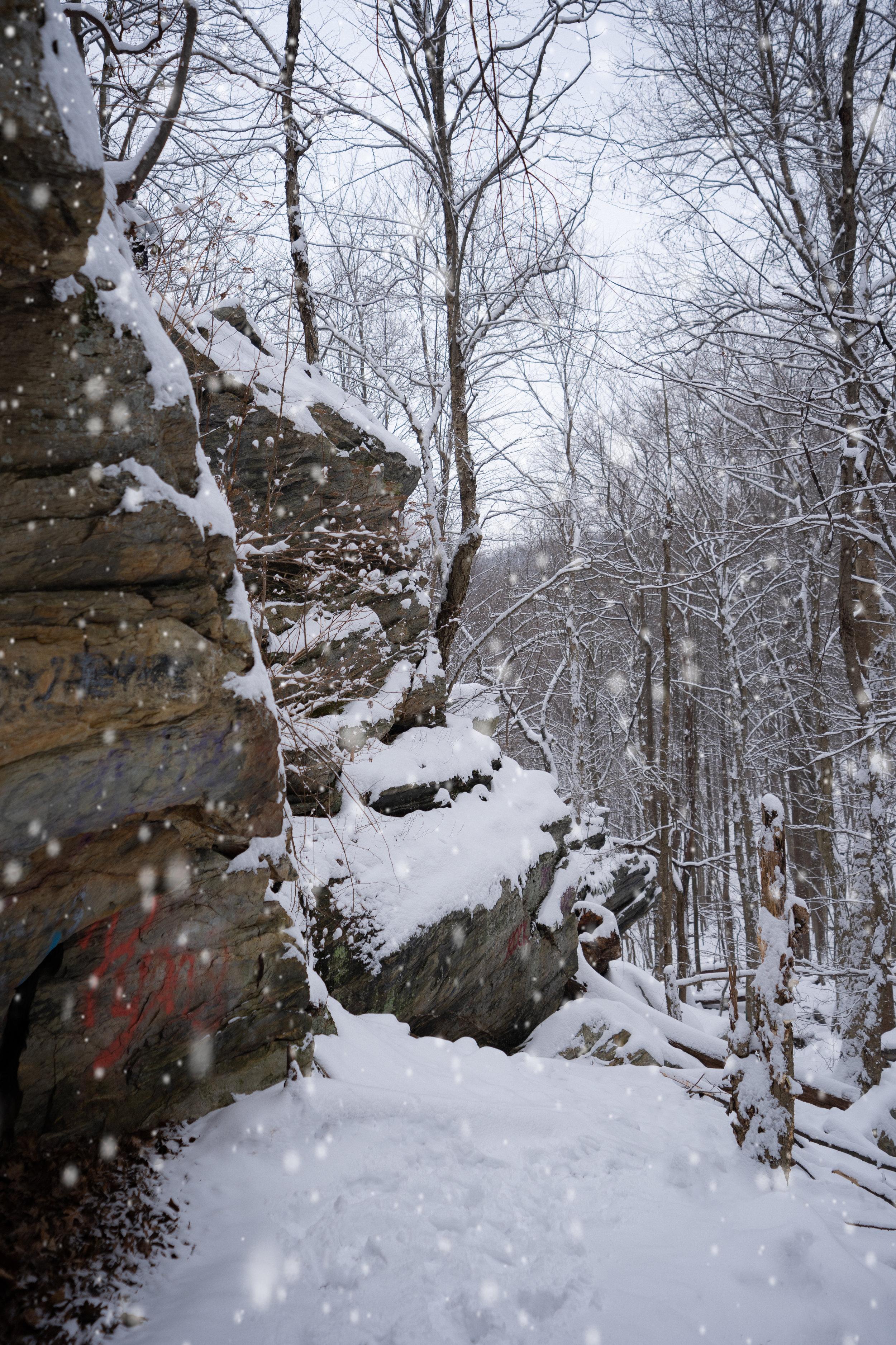 Snowday1-DavidScotto-008.jpg