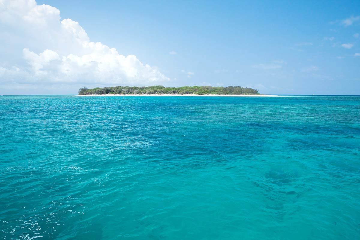 agnes-water-attraction-lady-musgrave-island.jpg