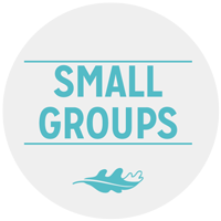GC-SamllGroups.png