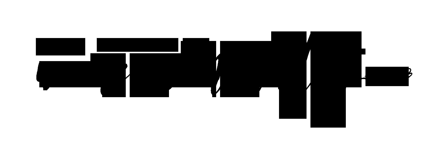 wm-logo-black.png