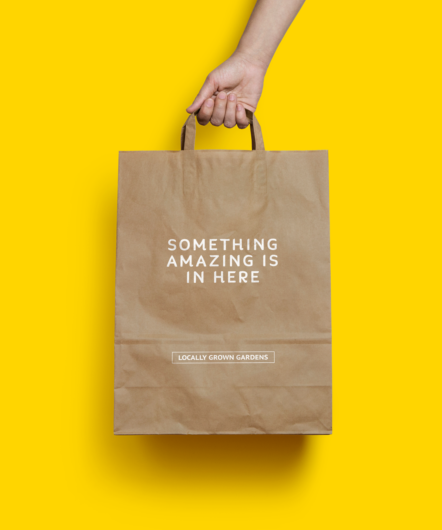 zachary_anton_reeves_brainding_design_bag.png