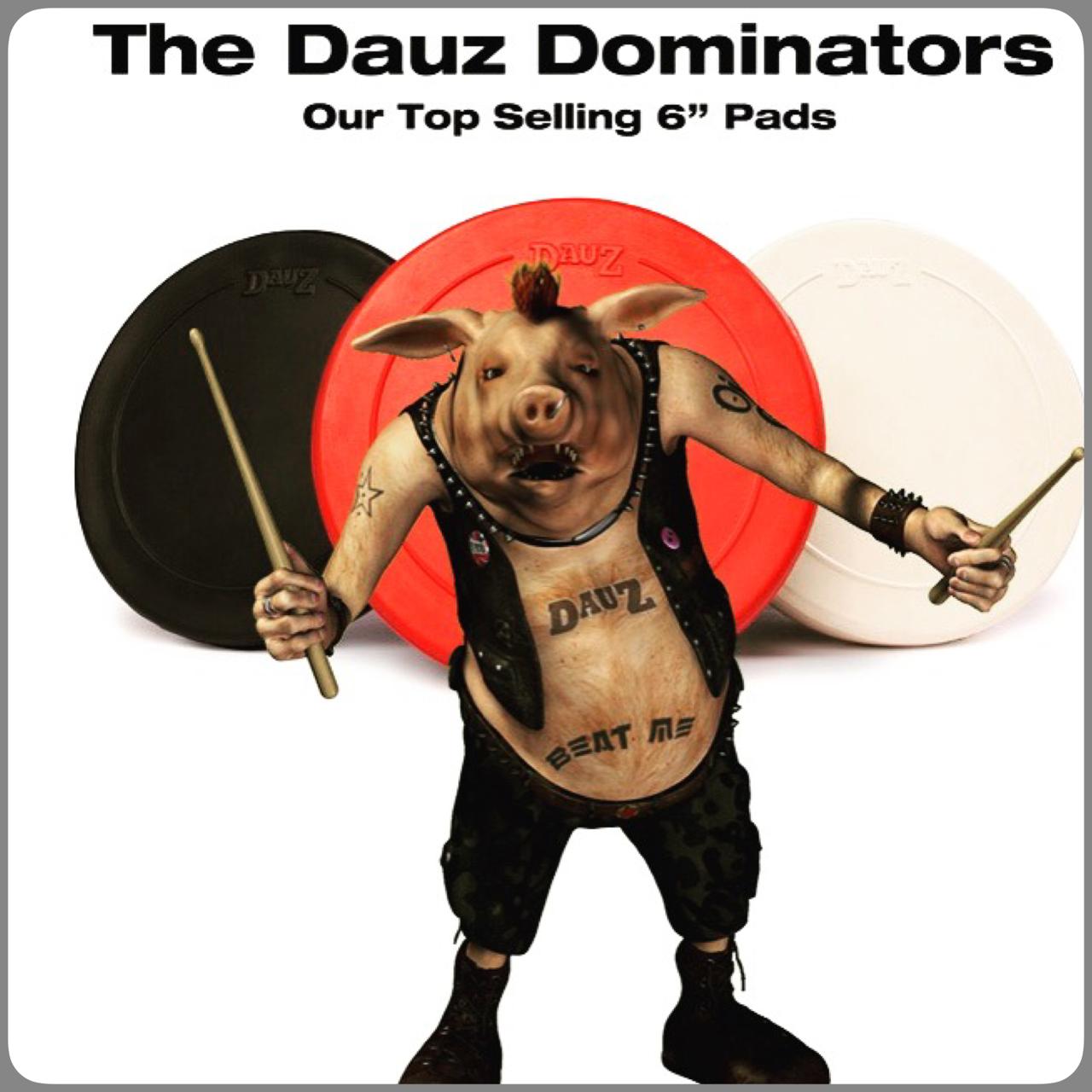 Drum Pig