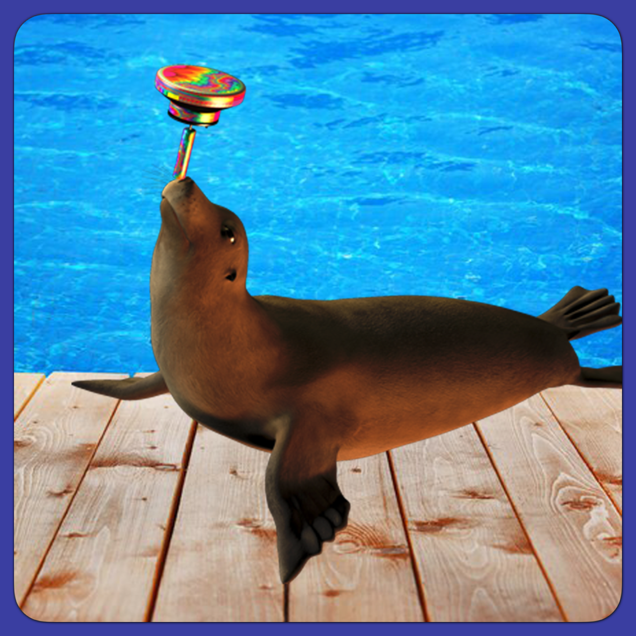 Dauz Drum Seal Balance