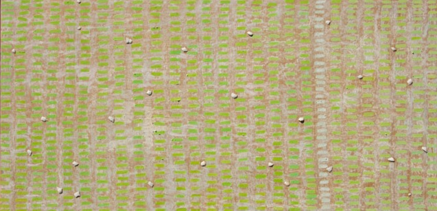 "Leapfrog, piggyback: moral conundrums — 2014 Oil, oil pastel, graphite & araucana eggshell on panel 24 7/8"" x 48 7/8"" Artist's collection Napa, California"