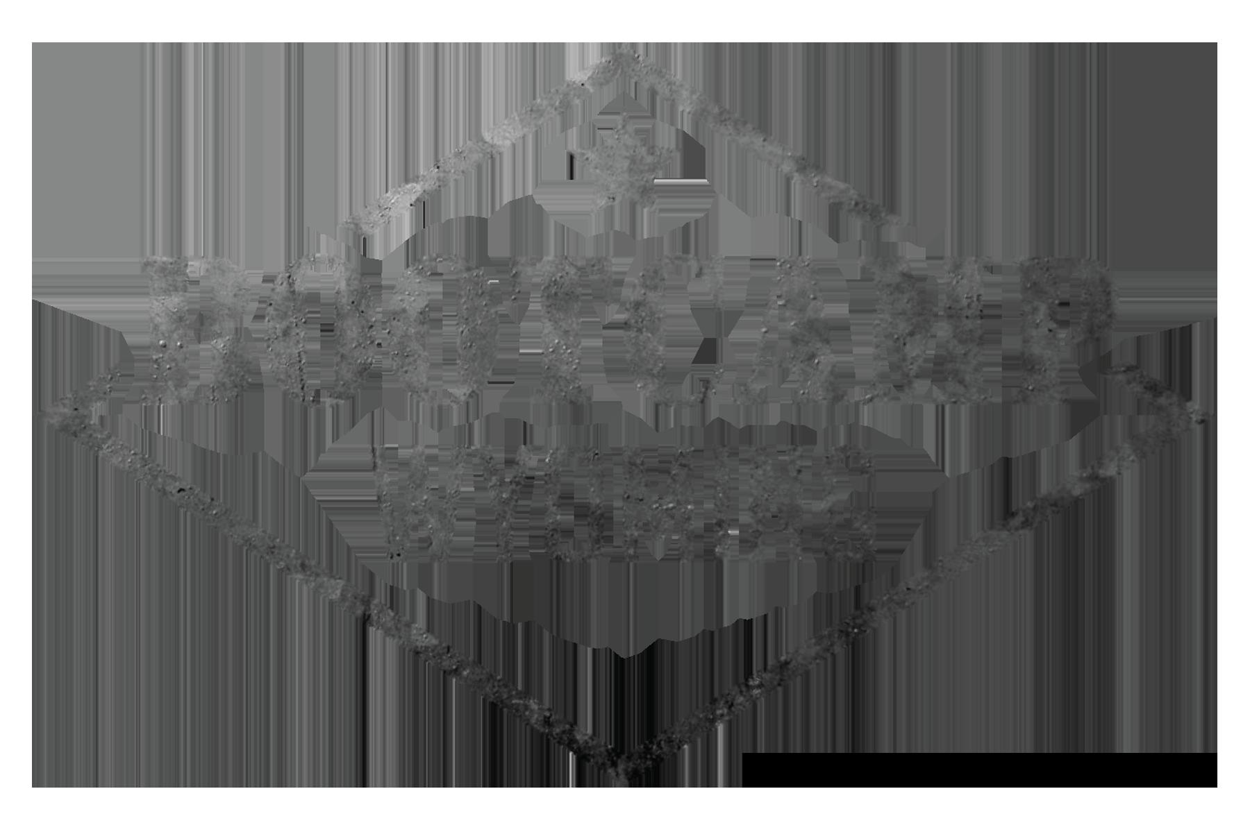 BCW logo-01.png