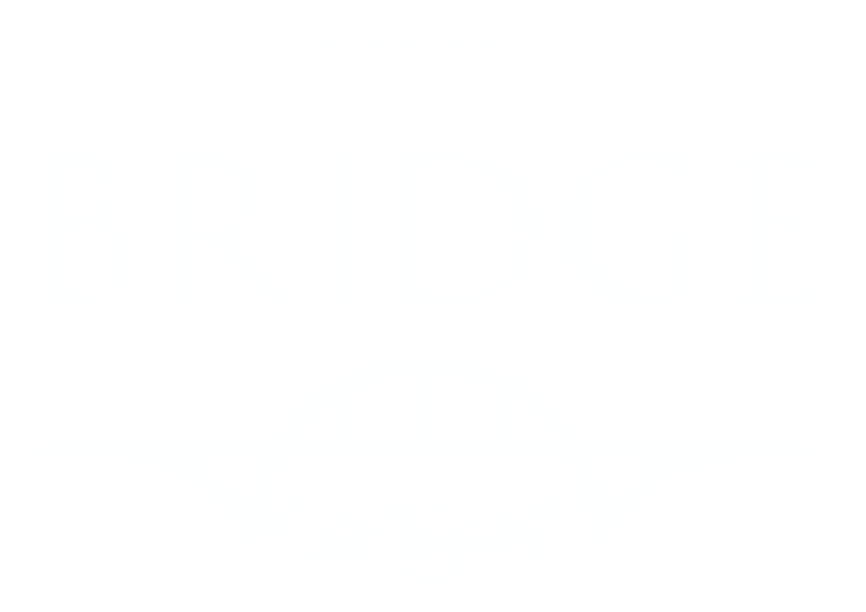 Bridge logo white-01.png