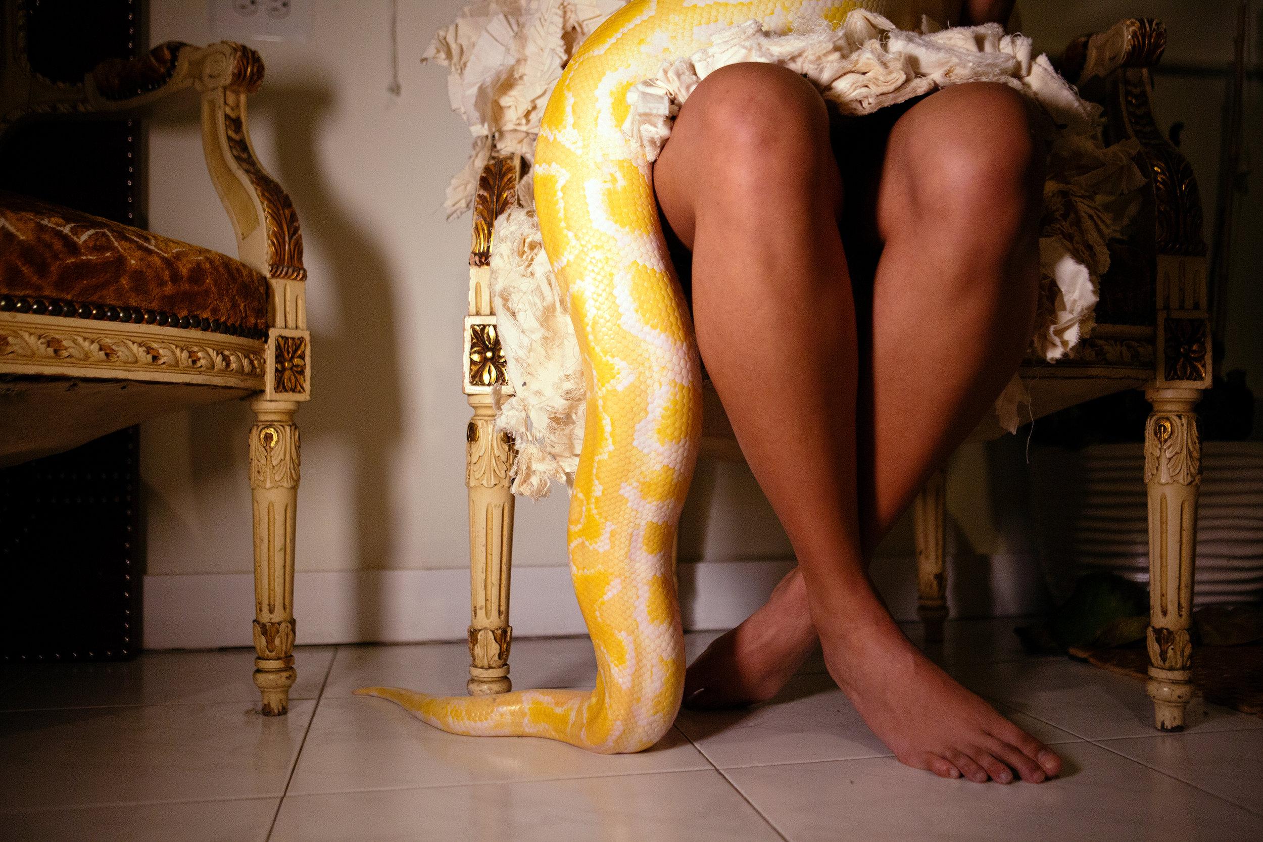 snake leg.jpg