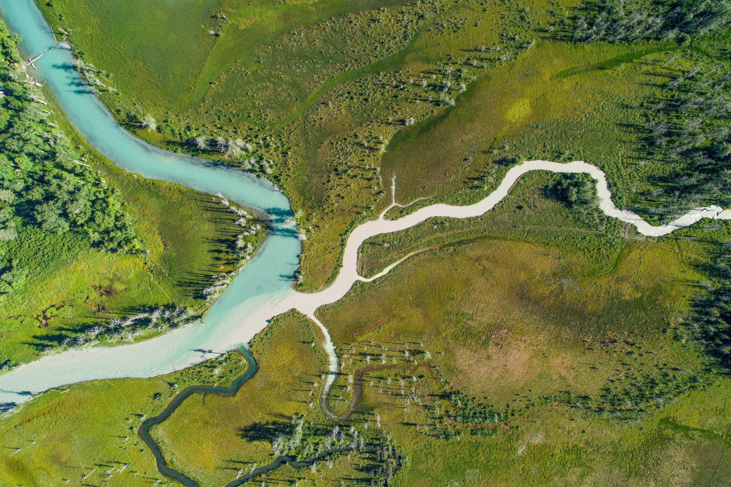 Sockeye spawning habitat, Chilkat Watershed   Photo - Connor Gallagher