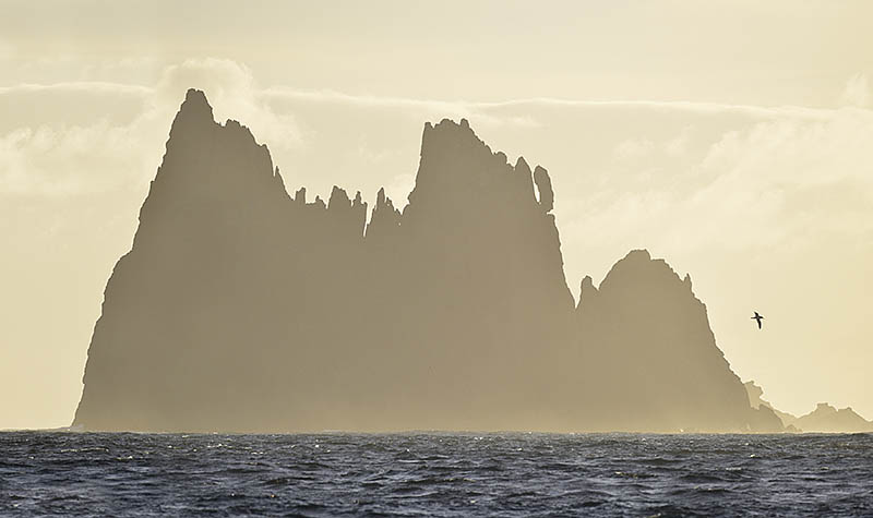 It is not always about filling the frame. In this instance, a distant shot of this Chatham Island Albatross allows the grandeur of the scenery to complement the majesty of the bird. ©Paul Sterry/BPOTY