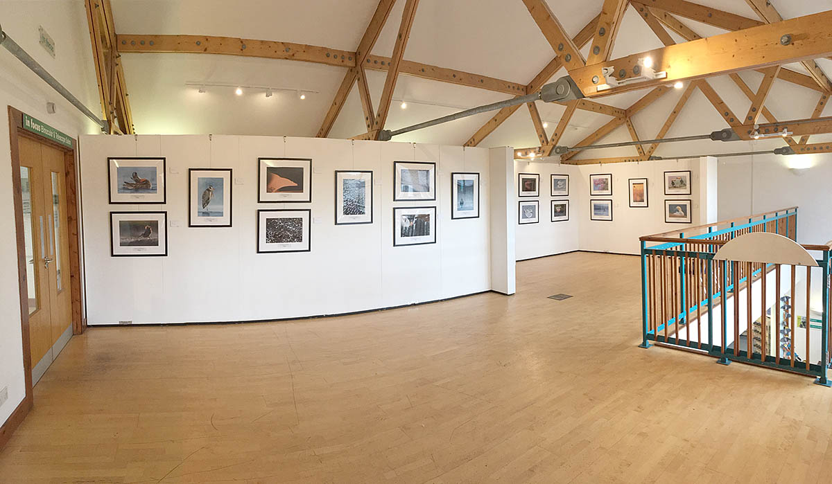The exhibition at the London Wetland Centre in Barnes