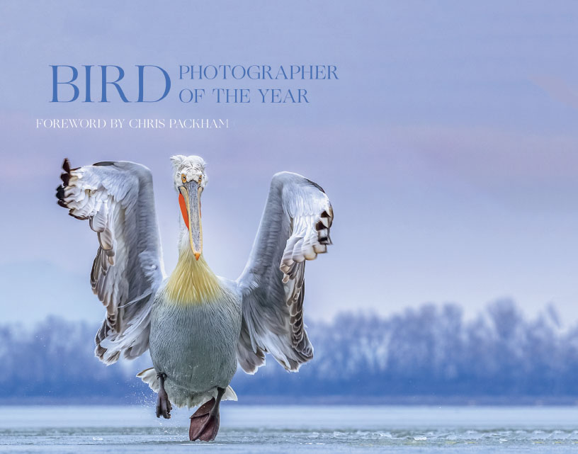 The latest Bird Photographer of the Year book whose publication coincides with Birdfair 2019.